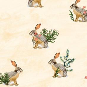Canadian Rockies Hare original