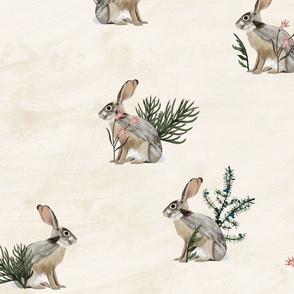 Canadian Rockies Hare Vintage