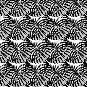 Slanted Deco Shells, Black & White