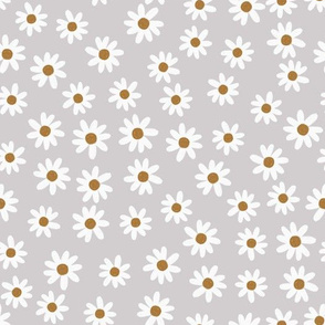 gray daisies