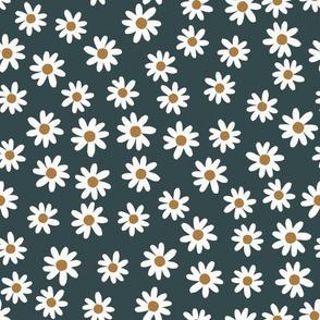 blue gray daisies