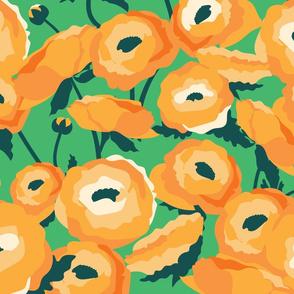 Orange Ranunculus Garden