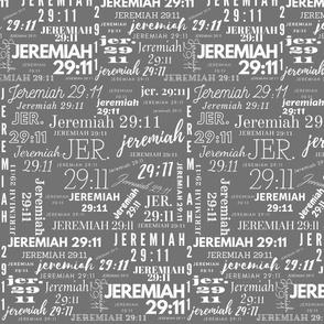 Gray and White Jeremiah 2911 (2021)