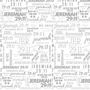 White and Lt. Gray  Jeremiah 2911 (2021)