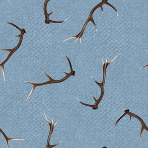 Antlers on textured light blue