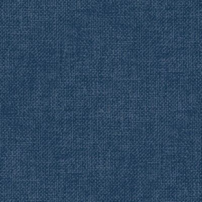 Textured Woad Blue