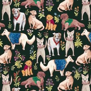 Regal Puppers- Green