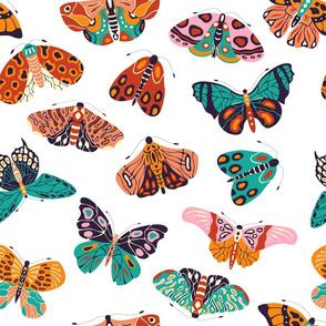 Spring Butterflies and Moths