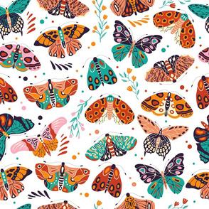 Spring Butterflies and Moths 2
