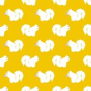 Casper the White Squirrel - Yellow