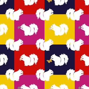 Casper the White Squirrel -Multicolor