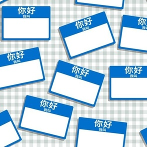 Scattered Chinese 'hello my name is' nametags - blue on grey gingham