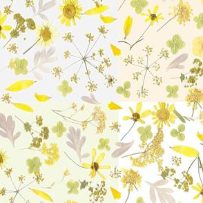 patchwork citrus pressed flowers