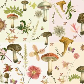 patchwork mushrooms