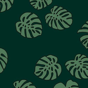 Monstera leaves summer garden boho design plant texture tropical hawaii nursery forest green olive