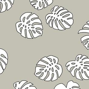 Monstera leaves summer garden boho design plant texture tropical hawaii nursery mist moody green white