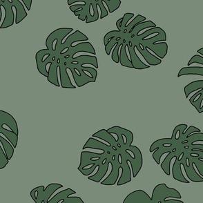 Monstera leaves summer garden boho design plant texture tropical hawaii nursery olive cameo green
