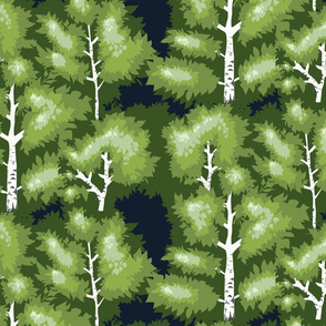 green spring birch tree forest large