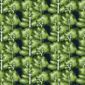 green spring birch tree forest medium
