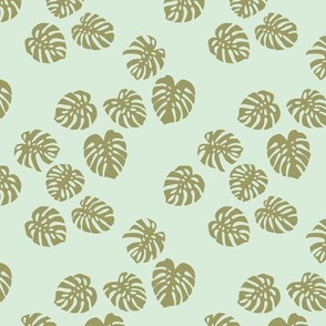 Little minimalist monstera leaves garden tropical leaves for summer for earth day and nature lovers forest mint green olive