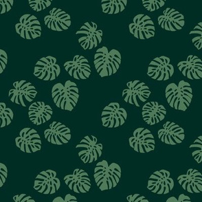 Little minimalist monstera leaves garden tropical leaves for summer for earth day and nature lovers forest green olive