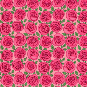 magenta roses line drawing floral on blush pink background