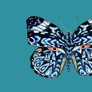 butterfly Pillow// blue moth//  fat quarter project