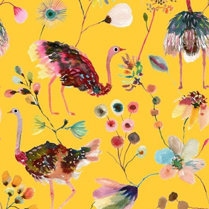 Ostriches yellow and multicolor