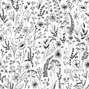 wildflowers garden