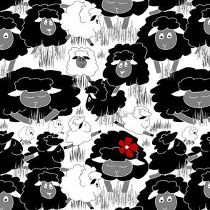 Just Sheep (Black & White Medium)