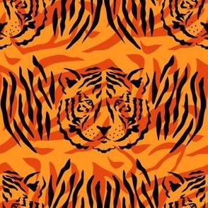 Tiger pattern 45