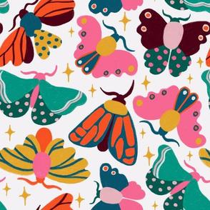 Colorful Moths
