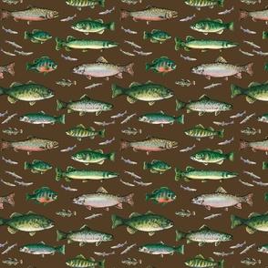 Go Fish on dark brown