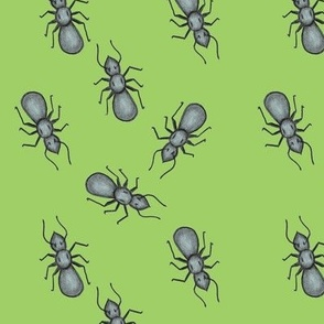 Ant March Green