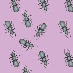 Ant March Purple