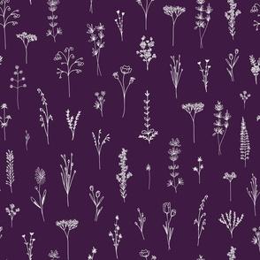 Violet Wildflowers 2021