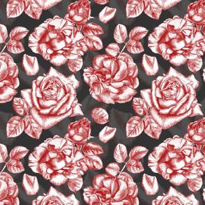 Red roses dark bg