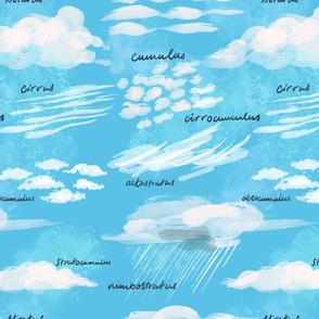 Curious Cloud Types