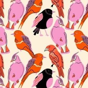 sassy bird friends