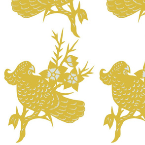 parrotts yellow-01
