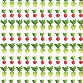 Veggie Stripes (1/2 scale) | Turnips
