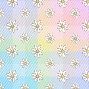 Jac Slade Rainbow daisy checks pastel