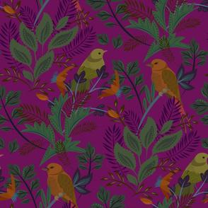 New Birds Magenta