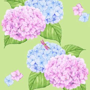 Hydrangeas And Dragonfly Floral