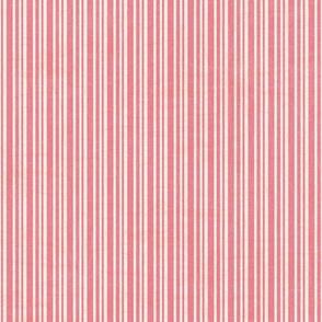 Pink and White Stripes-nanditasingh