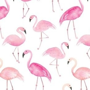 Flamingos in Pink
