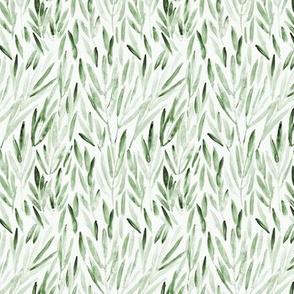 Khaki eucalyptus leaves • smaller scale - watercolor nature p171