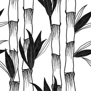 India Ink Tall Bamboo