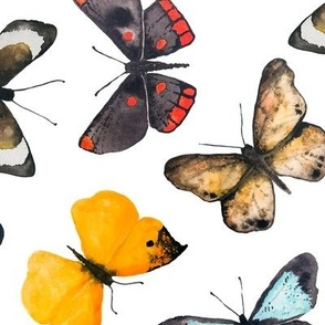 Watercolor Butterflies, Hand-Painted (large)