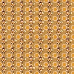 bear sunflower